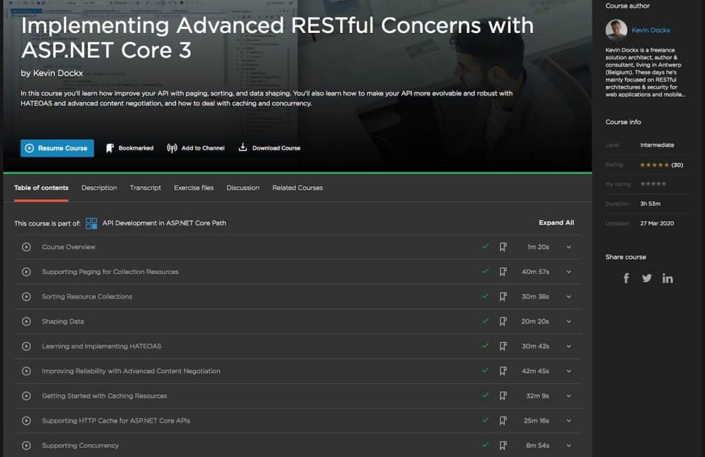 Implementing Advanced RESTful Concerns with ASP.NET Core 3