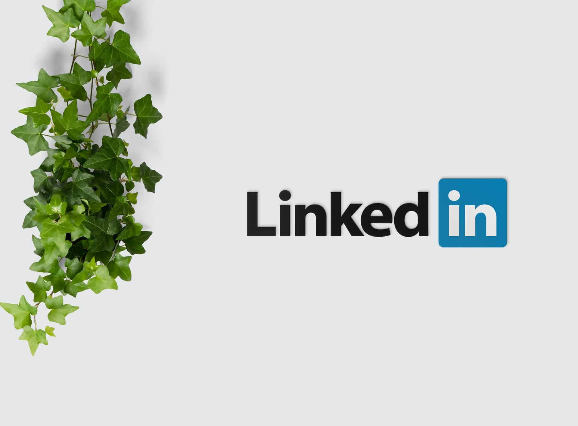 linkedin maximum exposure